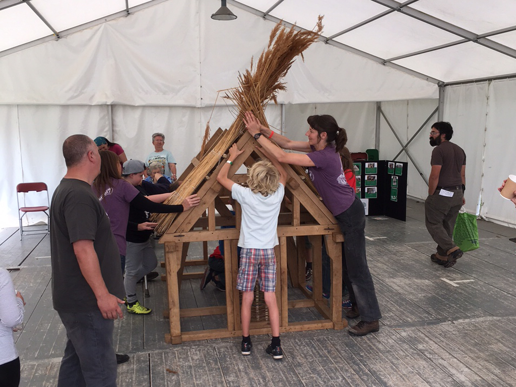 children and adults thatching a model oak framed house