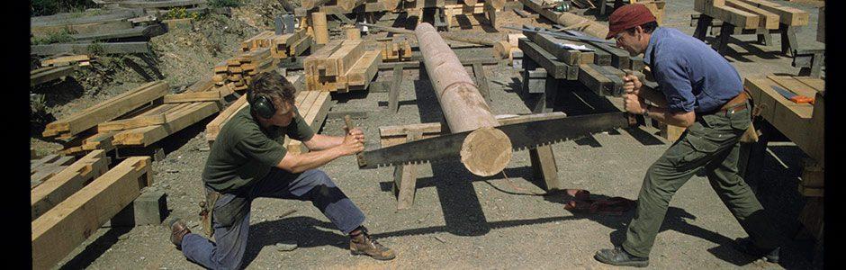 bridge leg sawing
