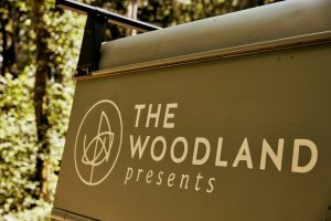 the woodland presents